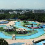 国営昭和記念公園のレインボープールを楽しむ3つのコツ!